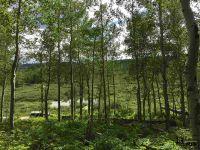 Home for sale: 407 Co Rd. 286/Upper Bear Mtn. Rd., Kremmling, CO 80459