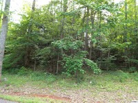 Home for sale: Lot 3 Tomahawk Dr., Cosby, TN 37722