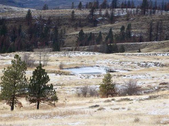62 Little Fall Creek, Council, ID 83612 Photo 5
