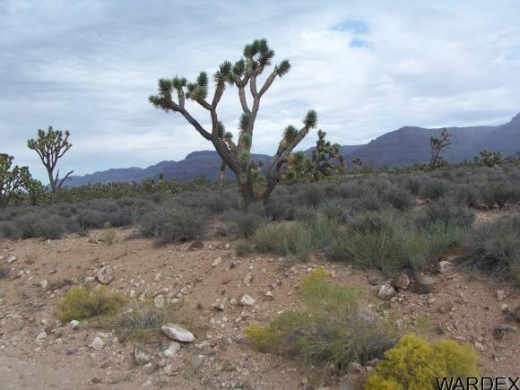 26712 N. Bullhead Rd., Meadview, AZ 86444 Photo 6