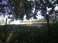 Home for sale: Whites Ridge (Rr), Parsons, WV 26287