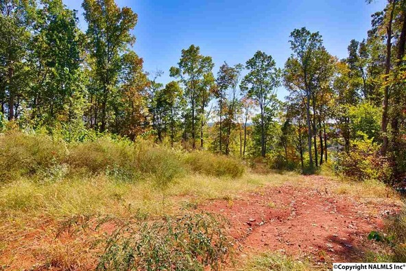 110 Deer Run Ln., Harvest, AL 35749 Photo 11