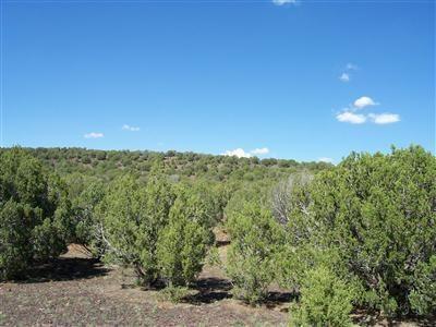 511 Martinez - Wwr Lot 511, Seligman, AZ 86337 Photo 24