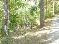 Home for sale: 35 Running Bear Rd., Hot Springs, NC 28743