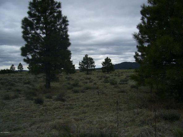 10558 E. White Horse Lake, Parks, AZ 86018 Photo 26