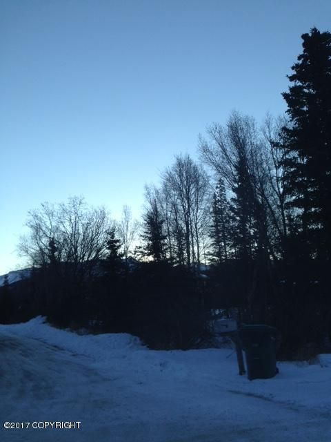 12801 Midori Dr., Anchorage, AK 99516 Photo 3
