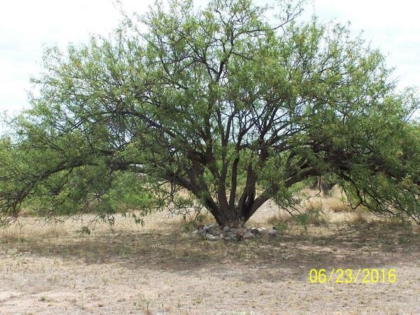 3020 W. Clark, Benson, AZ 85602 Photo 29