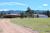 Home for sale: 24197 Hwy. 96, Wetmore, CO 81253