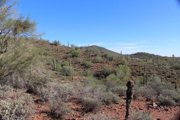 41000 N. 7th St., Phoenix, AZ 85086 Photo 3