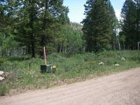 Home for sale: 4225 Bighorn Ln., Island Park, ID 83429
