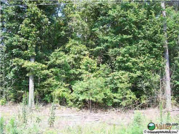 2 County Rd. 58, Pisgah, AL 35765 Photo 1