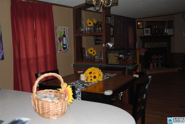 41 Norton Rd., Sylacauga, AL 35151 Photo 39