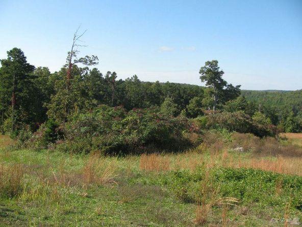 Smith Mountain Rd., 97 Acres, Jasper, AR 72628 Photo 8