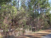 Home for sale: 271 White Oak Bluff Rd., Stella, NC 28582