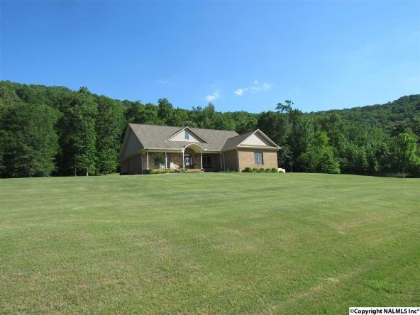 2171 Johnson Hollow Rd., Grant, AL 35747 Photo 3