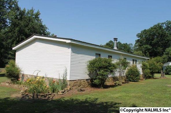 1210 County Rd. 23, Geraldine, AL 35974 Photo 37