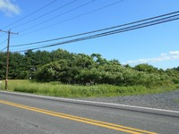 Home for sale: Station Rd., Lloyd, NY 12528