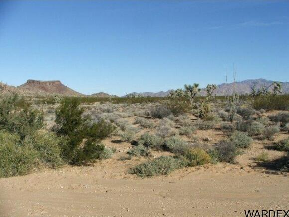 3529-B Arroyo Rd., Yucca, AZ 86438 Photo 1