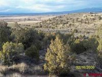 Home for sale: Tbd Dd Rd., Nucla, CO 81424