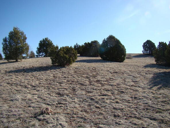1185 Arrowhead Pass, Show Low, AZ 85901 Photo 5