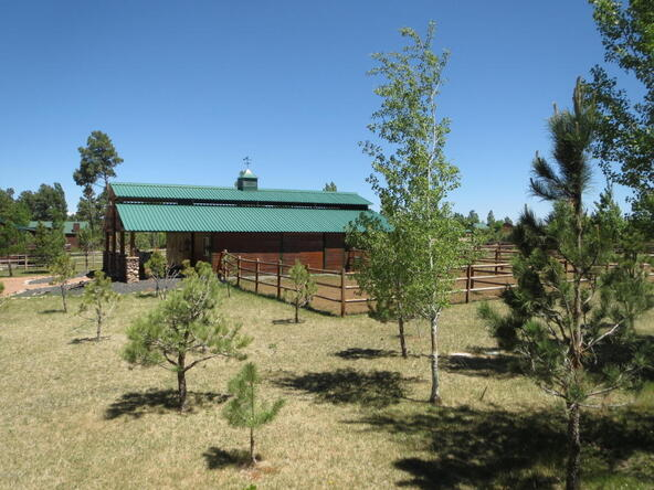 2295 Bison Ranch Trail, Overgaard, AZ 85933 Photo 33