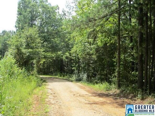 3.05 Acres Thomas Ln., Ashland, AL 36251 Photo 1