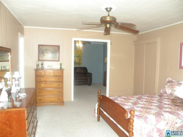 88 Black Acres Pt, Cropwell, AL 35054 Photo 30