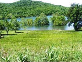 49 Lakeside Dr., Holiday Island, AR 72631 Photo 6
