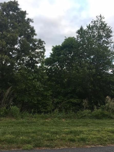 1731 White Fawn Ln., Rock Hill, SC 29730 Photo 12