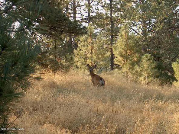 6185 W. Almosta Ranch Rd., Prescott, AZ 86305 Photo 11