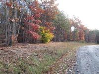 Home for sale: Lot 17 Moccasin Path Trail, Huddleston, VA 24104