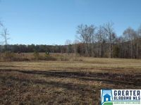 Home for sale: 0 Co Rd. 31, Ashville, AL 35953