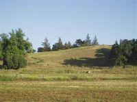 Home for sale: 9 Fox Borough Dr., Oakdale, CA 95361