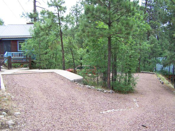 53 County Rd. 2067, Alpine, AZ 85920 Photo 6
