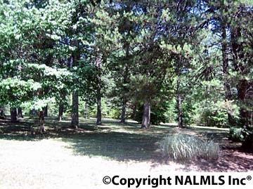 1172 County Rd. 639, Mentone, AL 35984 Photo 18