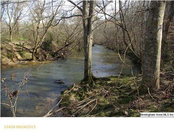 4 Horton Mill Rd., Oneonta, AL 35121 Photo 45