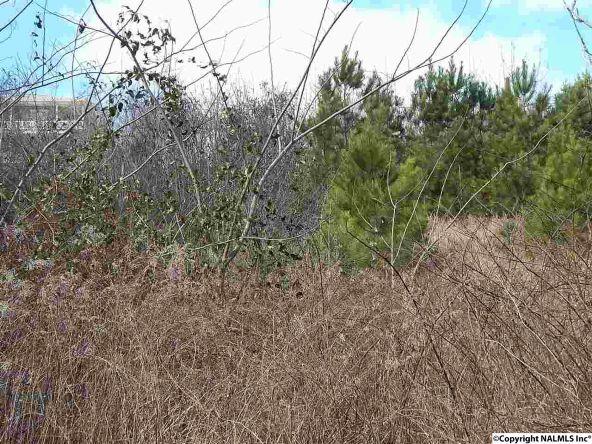 16 Camp Ney-A-Ti Rd., Guntersville, AL 35976 Photo 5