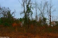 Home for sale: Tbd County Rd. 7 (Bear Creek Cutoff), Horatio, AR 71842