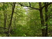 Home for sale: Tbd Moose Dr., Park Rapids, MN 56470