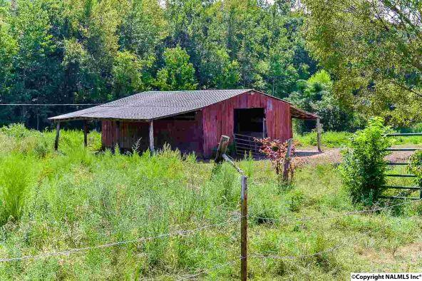 4949 County Rd. 327, Trinity, AL 35673 Photo 21