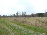 Home for sale: 8.43 Ac Hwy. 12, Tomah, WI 54660