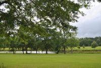 Home for sale: 202 Thornberry Pl., Ashford, AL 36312