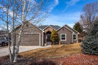 Home for sale: 469 Eagles Nest, Silt, CO 81652
