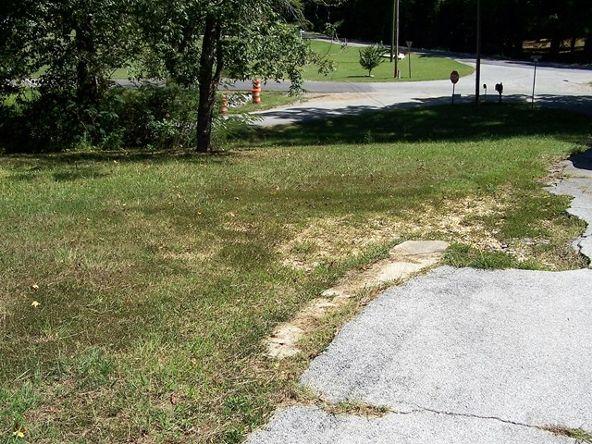 11 Seminole St., Russellville, AL 35653 Photo 3