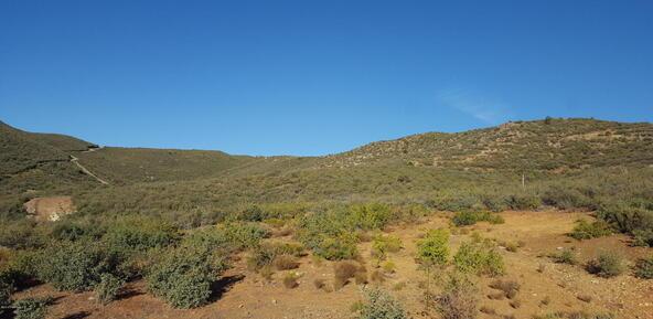 20 Freeport, Dewey, AZ 86327 Photo 103