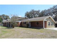 Home for sale: 2209 E. Lumsden Rd., Valrico, FL 33594
