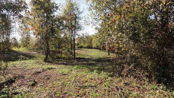 Cty Rt 27, Claverack-Red Mills, NY 12513 Photo 5