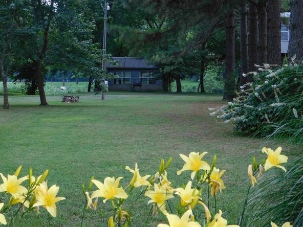 291 Heron Trail, Imboden, AR 72434 Photo 17