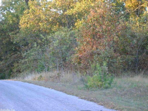 1010 & 1102 Cook Rd., Horseshoe Bend, AR 72512 Photo 11