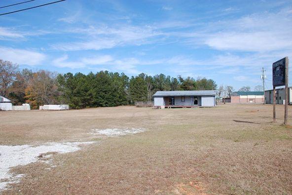160 Old Hwy. 134, Daleville, AL 36322 Photo 3